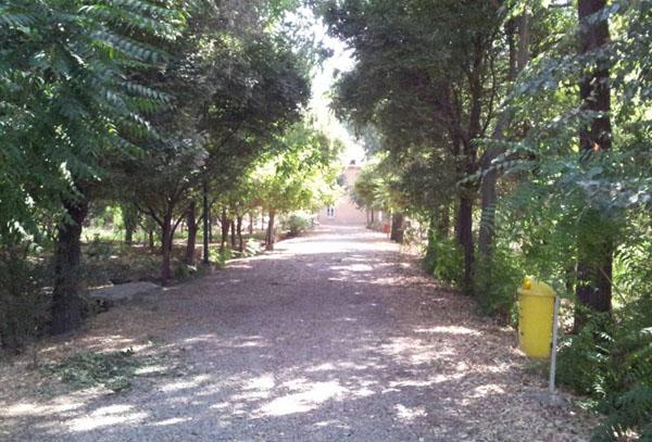 aramgah mossadegh (2)