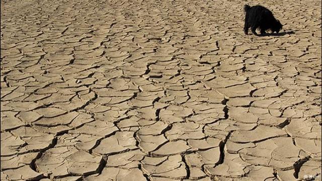 تا سال ۲۰۵۰ میلادی، خشکسالی ایران ١١ برابر شرایط فعلی خواهد شد